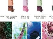 couleurs, palette maquillage végétale Yves Rocher!