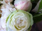Belles roses d'été