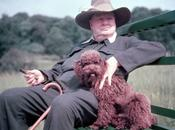 Winston Churchill 1874-1965 chiens