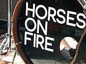 Horses Fire Bonnefooi, Bruxelles, juillet 2012