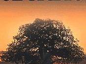 voyage coeur d'un amour interdit. L'arbre secrets