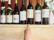 Beau repas entre amis oenophiles trois vins blancs pour mises bouche entrées.