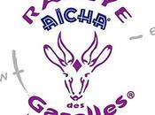 [entraide] Participation Rallye Gazelles