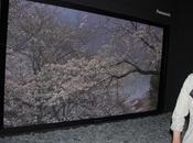 2012 Panasonic, Plasma 8K4K pouces