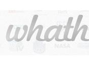 WhaTheLogo, Quizz logo