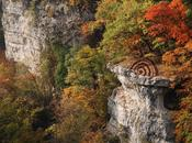 Pommes pins montagne Suisse fêter l'automne avec Sylvain Meyer Land