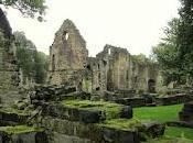 Kirkstall Abbey: Dans ruines Henry VIII