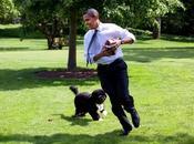Happy Birthday chien d'Obama)
