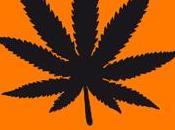 21/10 04/11 monologues Marijuana Théâtre poche