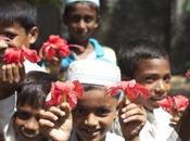 Birmanie Rohingyas, parmi plus persécutés monde