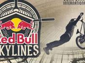 Bull Skylines Grand Palais