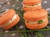 Macarons chevre piment espelette