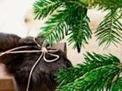 mood Quoi qu'il soit, Noël sera cosy