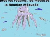 L'année méduses