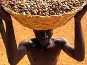 enfants-esclaves dans monde... l'industrie cacao