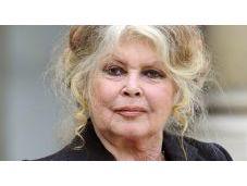 Brigitte Bardot réclame consommation viande cheval