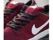 Nike Dunk Burgundy Brown White