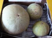Confiture melons d'eau