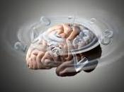 gluten perturbe cerveau
