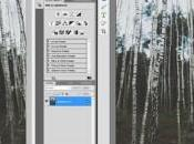 Logiciel Photoshop Elements