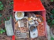 Construction d'un hôtel insectes matériaux récupération