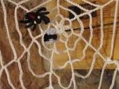 Toile d'araignée avec mouche araignée crochet