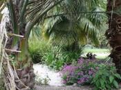 [Photos] jardin retraite Quimper