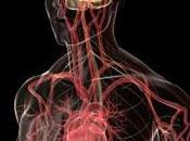 ALZHEIMER: diurétiques antihypertenseurs réduisent moitié risque démence Neurology