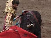 L'escalafon 2013 matadores