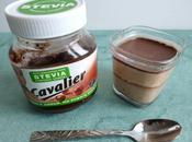 yaourts maison diététiques pâte tartiner chocolat noisette stévia (pour pots)