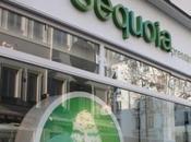 pressings écologiques Sequoia vont accélérer leur implantation France