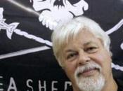 capitaine Paul Watson débarque Etats- Unis d'exil