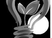 blog pour suivre l'actualité éco-activités