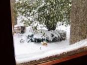 Derrière fenêtre