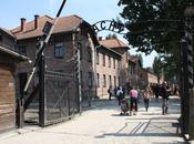 C'était donc Auschwitz… 2010