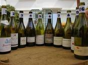 RE-VE-VIN 2008: quart d'heure américain Beaujolais
