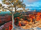 endroits naturels découvrir Etats-Unis
