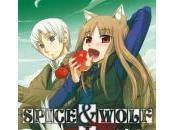 Spice Wolf Yôsei, cadeau fées