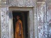 poivres Kampot Phu-Quoc, épices d'exception