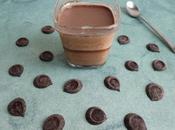 yaourts diététiques maison palets chocolat noir stévia (sans sucre)