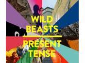Wild Beasts Sweet Spot