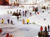 vraies belles saisons Québec