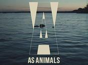 #312 Animals