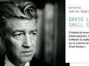 petites histoires grand David Lynch