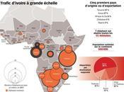 Braconneur métier d'avenir Afrique