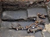 sépultures aztèques chiens intriguent archéologues