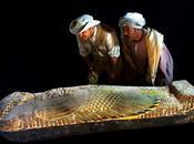 tombe XVIIème dynastie l'Egypte ancienne découverte Louxor