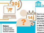 Sites e-commerce attention voilà Hamon
