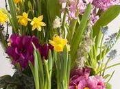 Interflora fête printemps