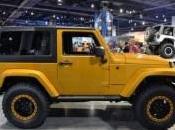 Jeep Wrangler 2015 montagne